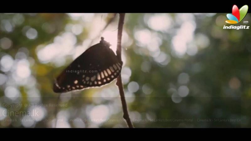 Santhosh Sivans Inam ( Ceylon )Tamil Film Teaser _ Arvind Swamy, Karunas_ Trailer[11-57-30] (5) [800x600]